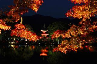 大覚寺夜間特別拝観(イメージ)