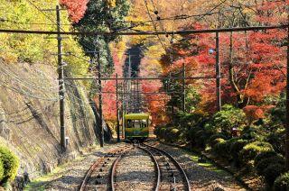 紅葉の高尾山ケーブルカー 画像提供:PIXTA
